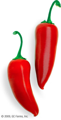 Pepper_jalapeno_red
